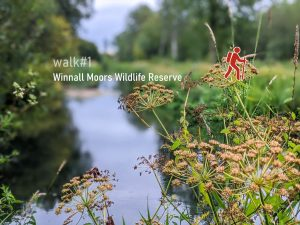 WAlk 1 - Winnall Moors Wildlife Reserve