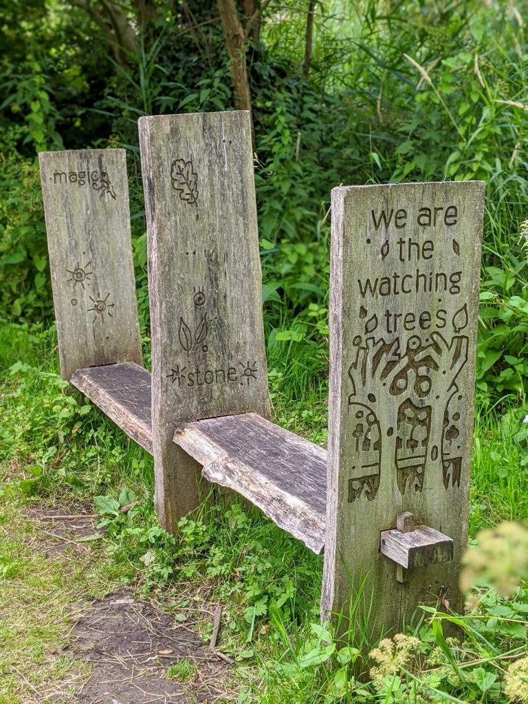Whispering trees bench (2)