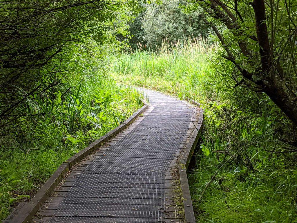 Boardwalk through the Nature Reserve