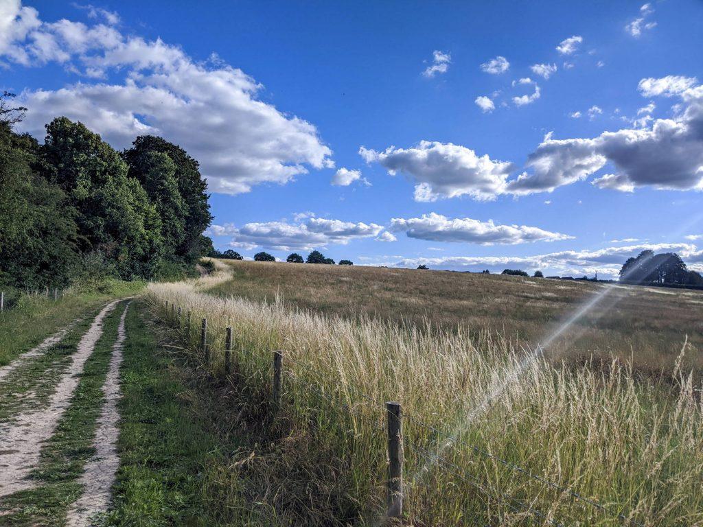 Path around the Nature Reserve