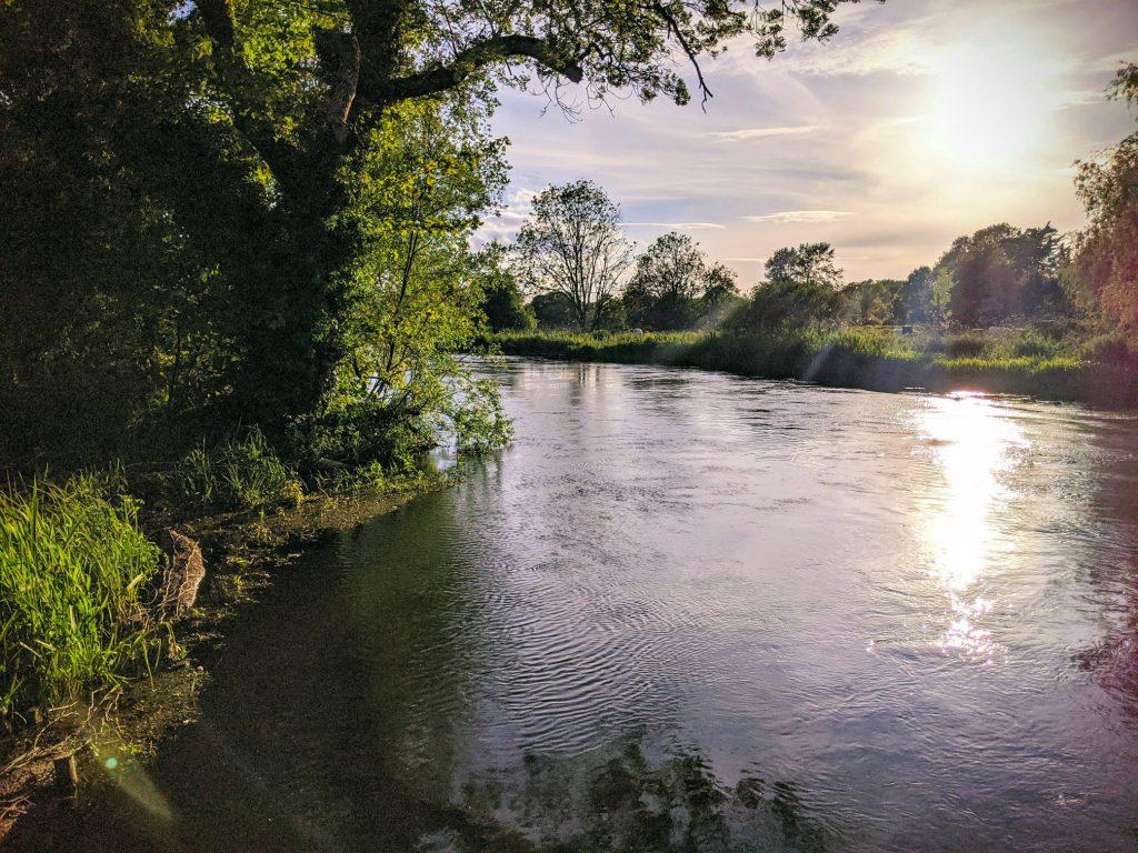 River Itchen near Chilland Lane (eastwards)