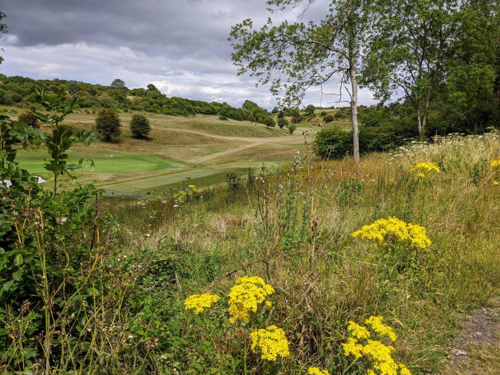 Through Hockley golf course