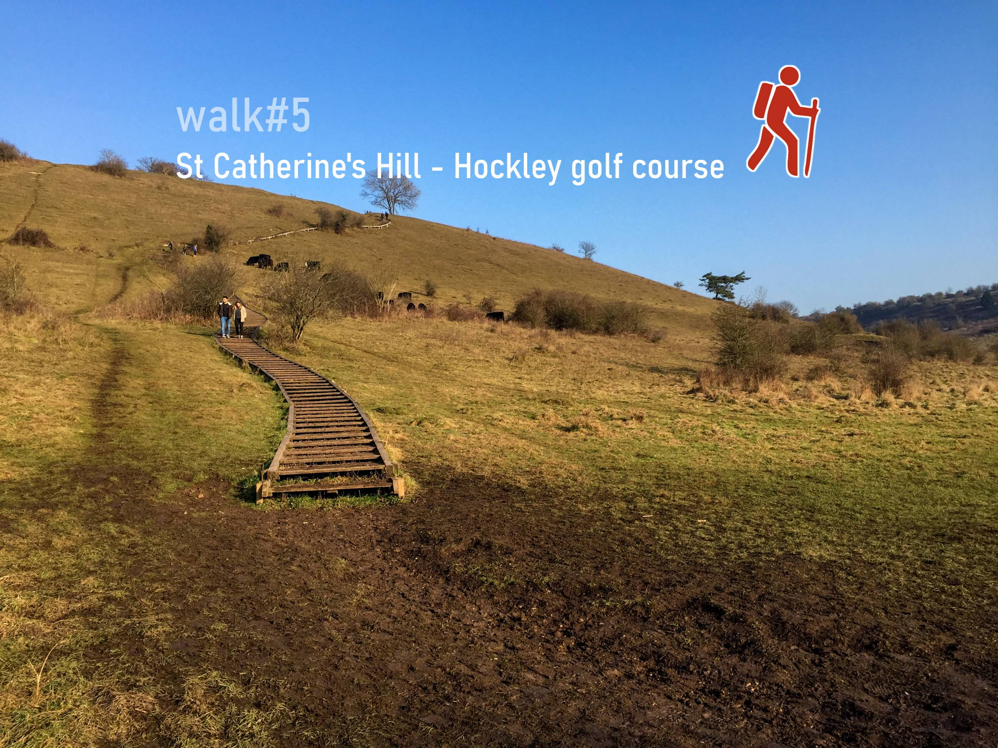 St Catherine's Hill - Hockley golf course