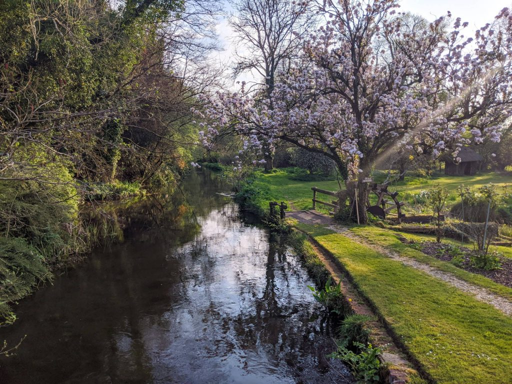 Spring blossoms at Fulling Mill
