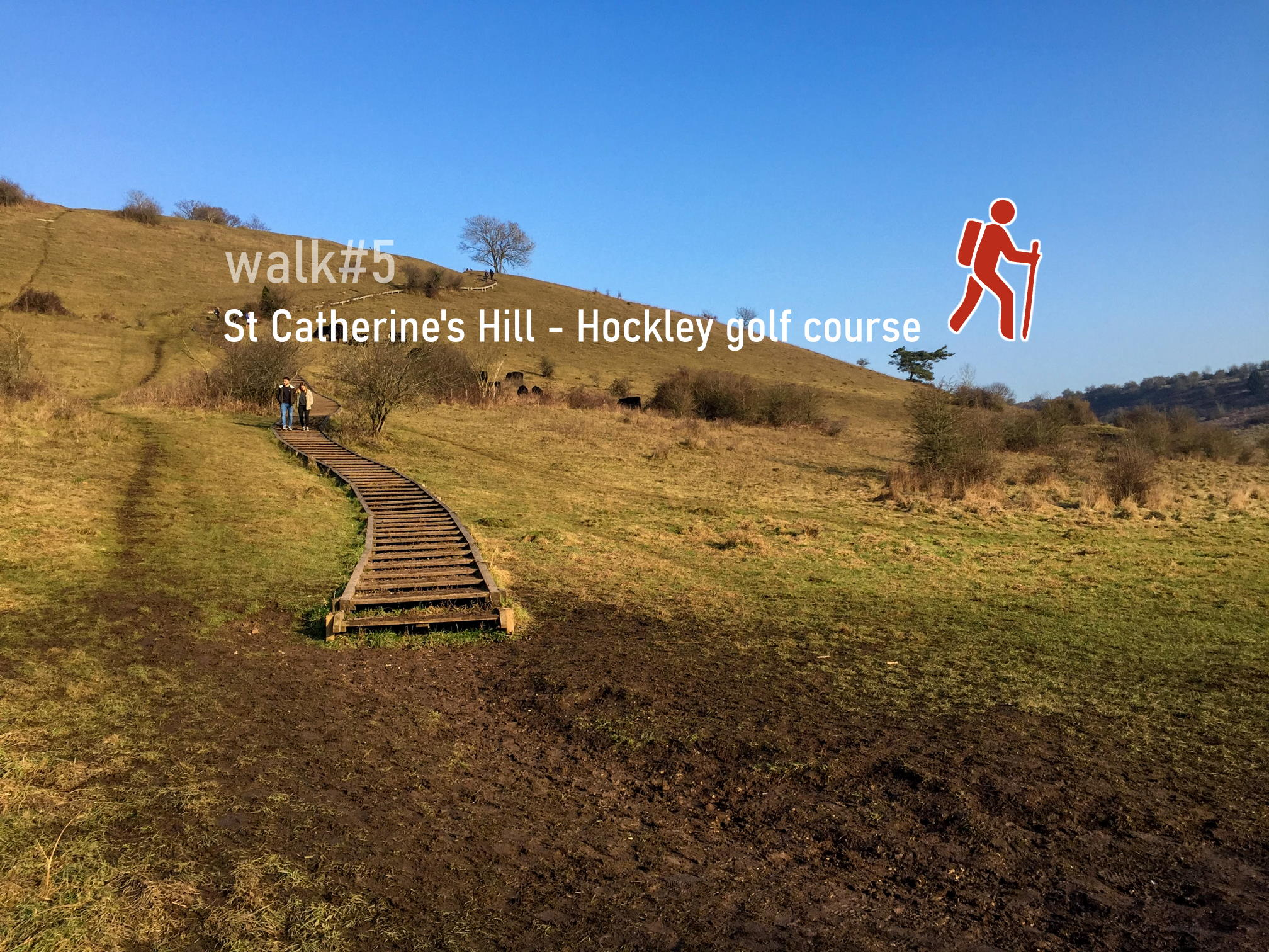 walk5 - St Catherine's Hill - Hockley golf course