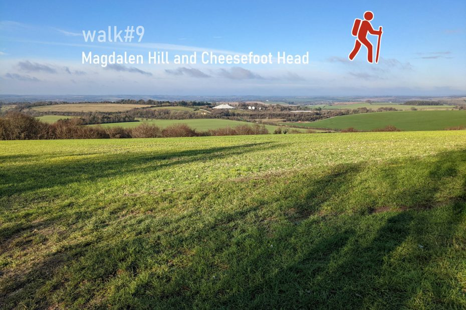 Walk#9 - Magdalen Hill and Cheesefoot Head