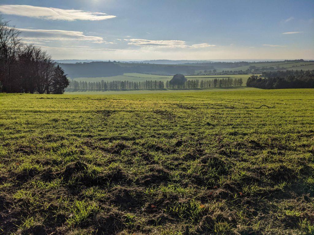 Green fields - Telegraph Hill Towards Farley Down