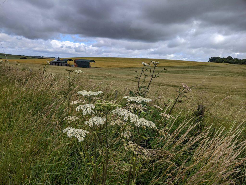 fields, farm building, dark clouds