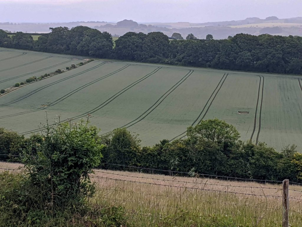 fields and rolling landscape in the background