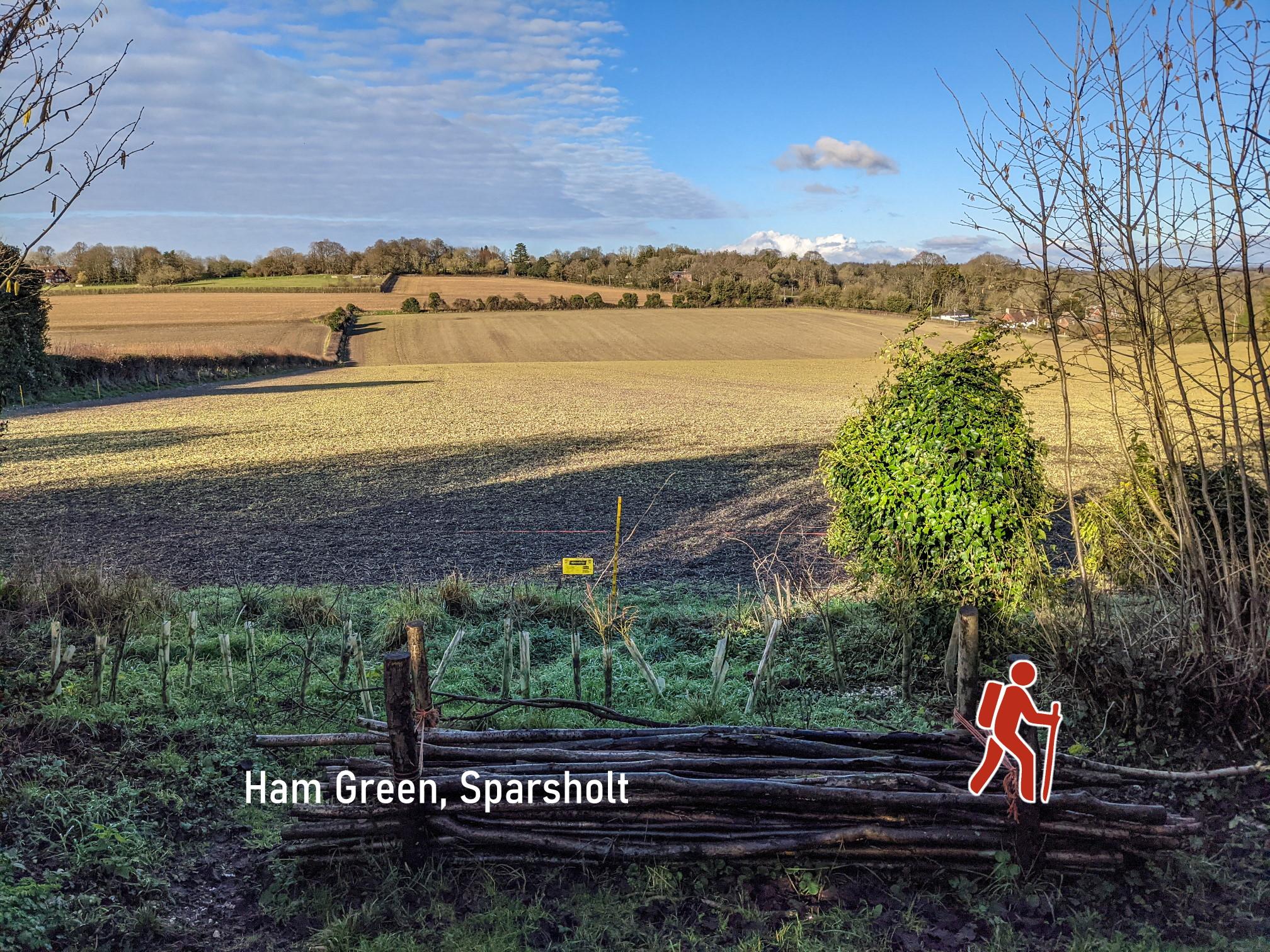 Ham Green walk