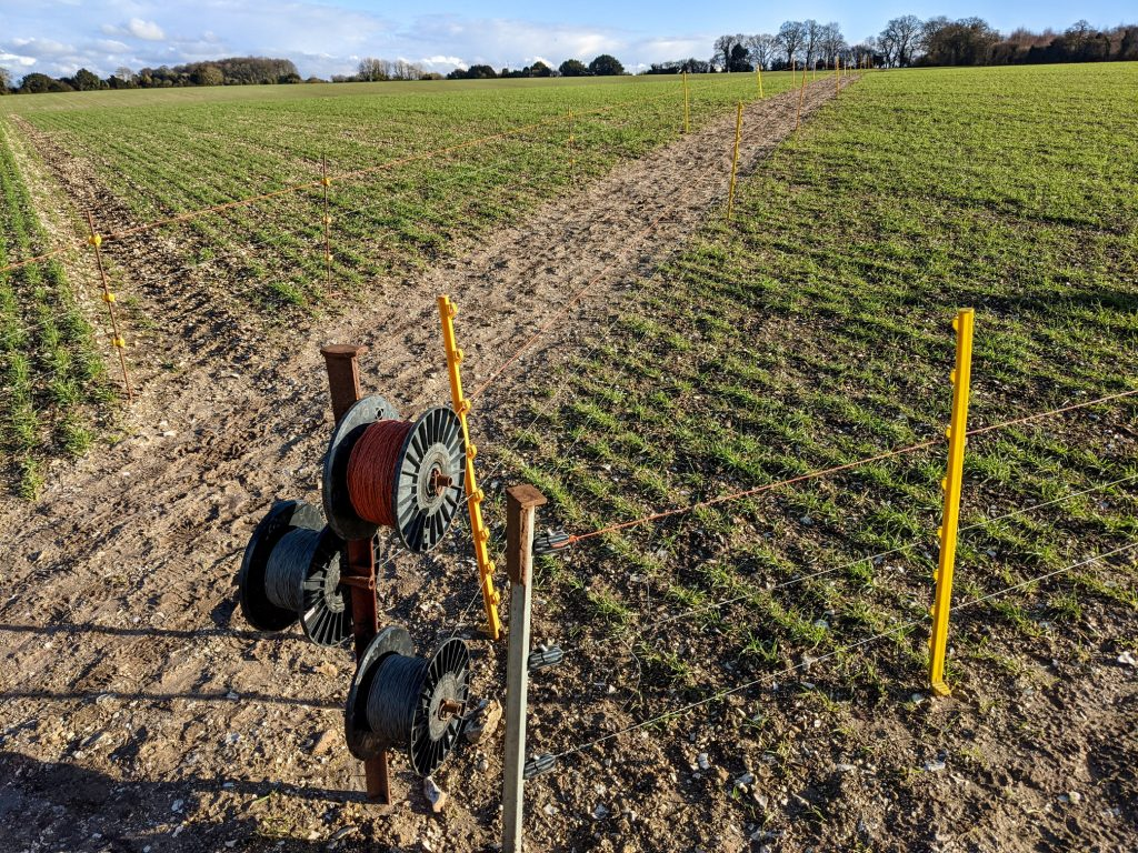 Fenced-off path across the field