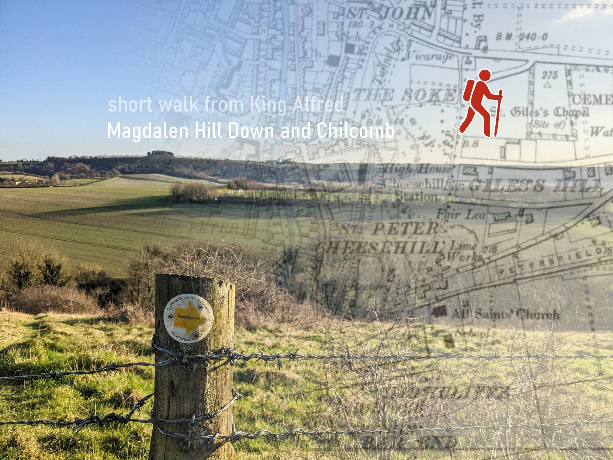 Magdalen Hill Down