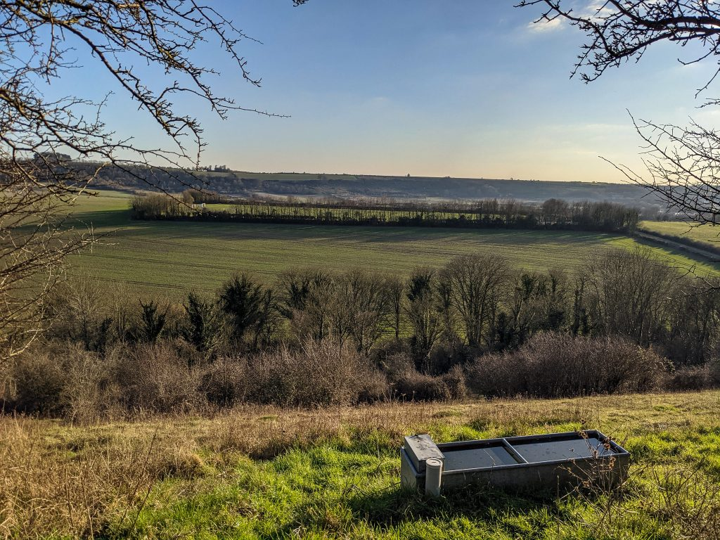 View from Magdalen Hill Down