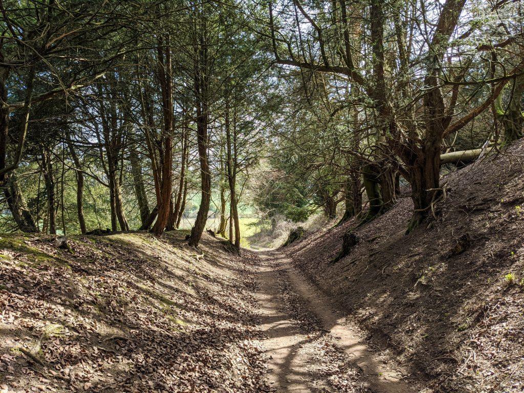 Footpath near Ashley Down