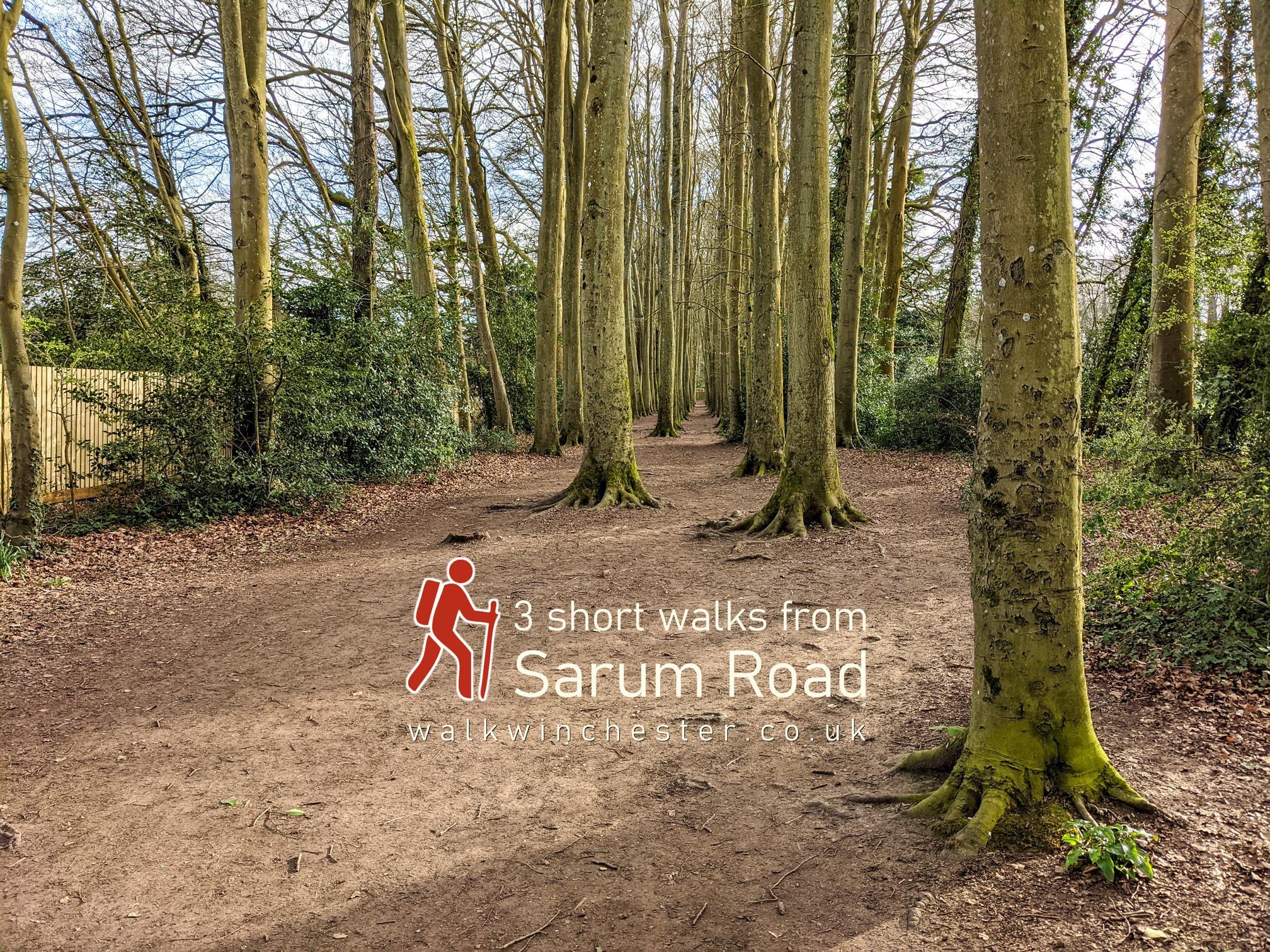 3 short walks from Sarum Road