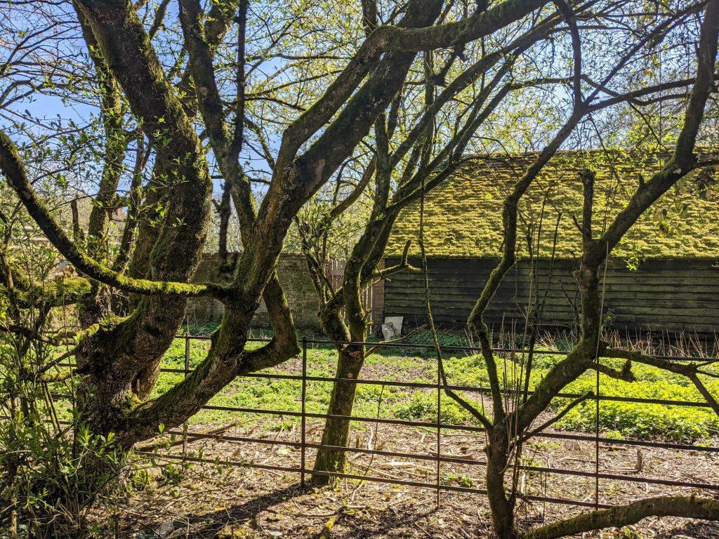 Buckholt Farm