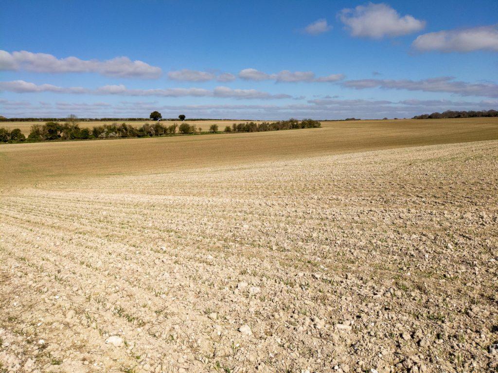 Field between Houghton and Broughtonxxx