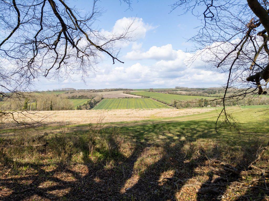 Clarendon Park, view towards the Winterbournes