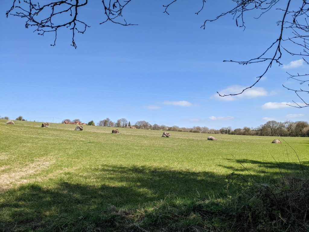 View up the Hill from Richwellsted Copse