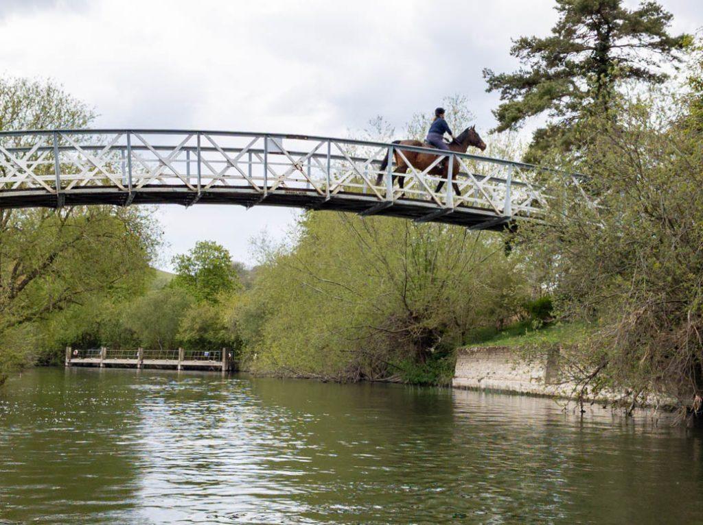 Horse on Little Wittenham Bridge